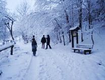 Winterbild - Pension Strohbach in Sebnitz - S?chsische Schweiz